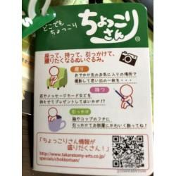 Pokemon 2018 Takara Tomy Chokkori San Misty Small Plush Toy