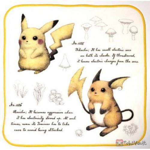 Pokemon Center 2019 Pokemon Researcher Campaign Pikachu Raichu Hand Towel