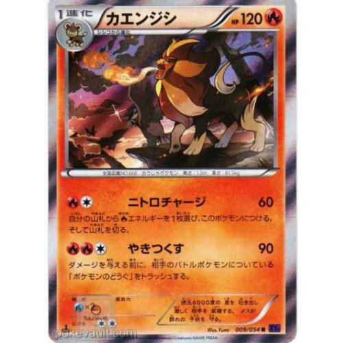 Pokemon 2016 XY#11 Explosive Fighter Pyroar Holofoil Card #009/054