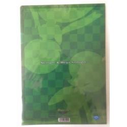 Pokemon Center 2014 Gardevoir Mega Gardevoir A4 Size Clear File Folder