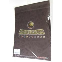 Pokemon Center 2012 Dragon Selection Druddigon A4 Size Clear File Folder
