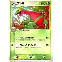 Pokemon 2005 McDonalds Series #6 Skeptile Promo Card #081/PCG-P
