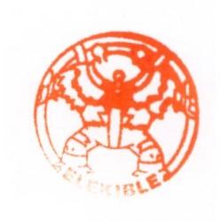 Pokemon 2010 Stamp Retusden Series #10 Electivire Ink Stamper