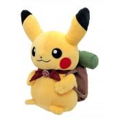 Pikachu Adventure Campaign